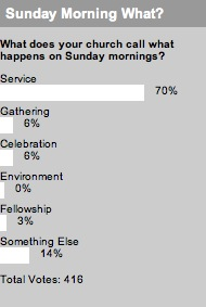 2008_03_18sundaymorningwhatpoll.jpg