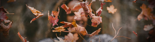 Fall Kickoff: How Does Your Church Ramp up in the Fall?