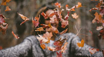 Don't Be Frazzled in the Fall: Take Care of Yourself Now