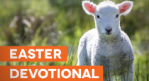 Easter Devotional for Church Communicators